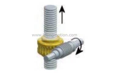 worm gear Translating screw Jacks